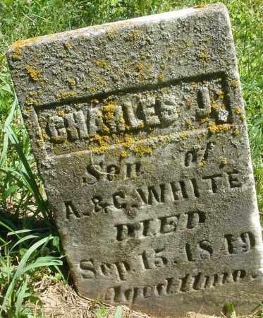 WHITE, CHARLES J. - Warren County, Ohio | CHARLES J. WHITE - Ohio Gravestone Photos
