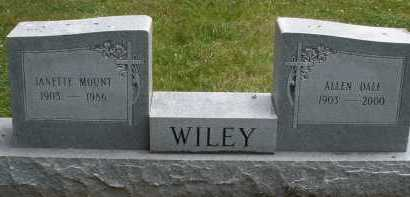 WILEY, ALLEN DALE - Warren County, Ohio | ALLEN DALE WILEY - Ohio Gravestone Photos