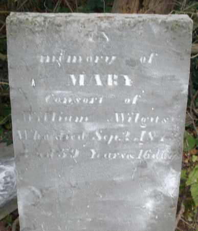 WILGUS, MARY - Warren County, Ohio | MARY WILGUS - Ohio Gravestone Photos