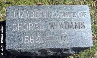 ADAMS, ELIZABETH A. - Washington County, Ohio   ELIZABETH A. ADAMS - Ohio Gravestone Photos