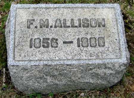 ALLISON, FRANCIS MARION - Washington County, Ohio | FRANCIS MARION ALLISON - Ohio Gravestone Photos