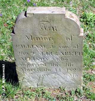 ALLISON, WILLIAM JR. - Washington County, Ohio   WILLIAM JR. ALLISON - Ohio Gravestone Photos