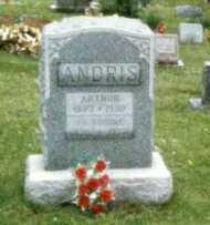 ANDRIS, ARTHUR - Washington County, Ohio | ARTHUR ANDRIS - Ohio Gravestone Photos