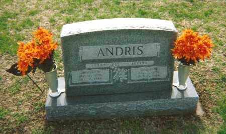 ANDRIS, EMILIENNE - Washington County, Ohio | EMILIENNE ANDRIS - Ohio Gravestone Photos