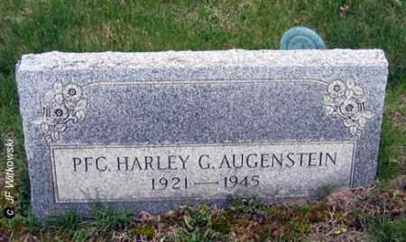 AUGENSTEIN, HARLEY G. - Washington County, Ohio | HARLEY G. AUGENSTEIN - Ohio Gravestone Photos