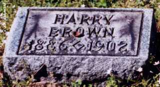 BROWN, HARRY WILLIAM - Washington County, Ohio | HARRY WILLIAM BROWN - Ohio Gravestone Photos