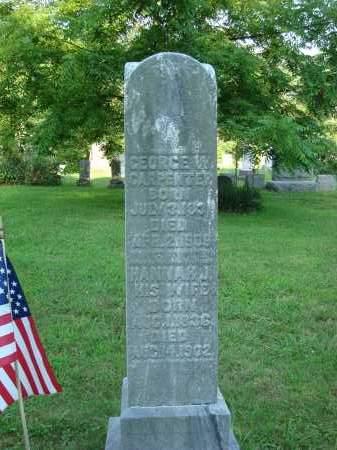CARPENTER, GEORGE W. - Washington County, Ohio | GEORGE W. CARPENTER - Ohio Gravestone Photos