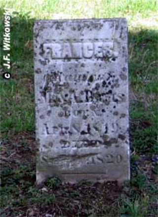DAVIS, FRANCES - Washington County, Ohio | FRANCES DAVIS - Ohio Gravestone Photos