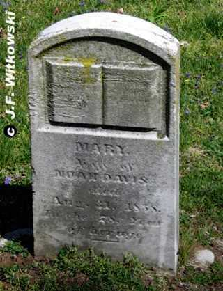 DAVIS, MARY - Washington County, Ohio | MARY DAVIS - Ohio Gravestone Photos