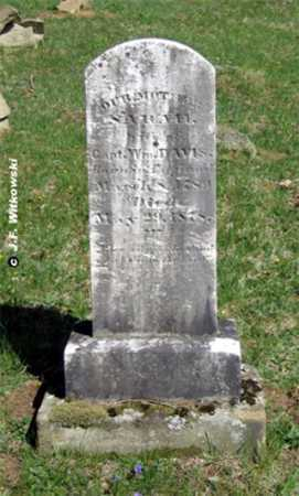 DAVIS, SARAH - Washington County, Ohio   SARAH DAVIS - Ohio Gravestone Photos