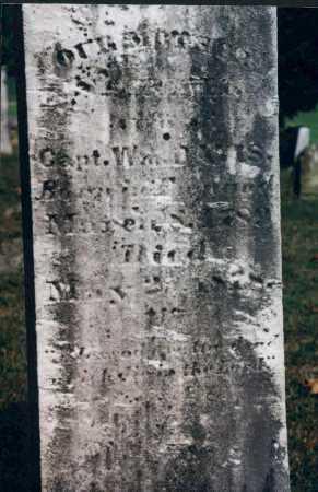 DAVIS, SARAH - Washington County, Ohio | SARAH DAVIS - Ohio Gravestone Photos