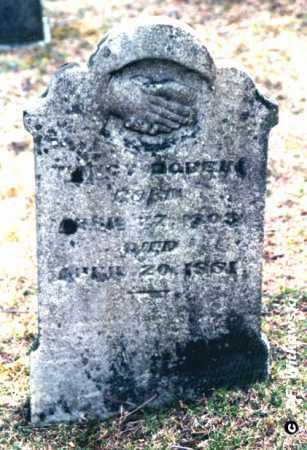 SHOCKLEY DOBBIN, NANCY ANN - Washington County, Ohio | NANCY ANN SHOCKLEY DOBBIN - Ohio Gravestone Photos