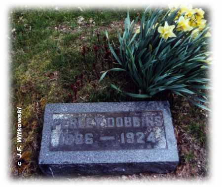 DOBBINS, PERLEY BURCHETT - Washington County, Ohio | PERLEY BURCHETT DOBBINS - Ohio Gravestone Photos