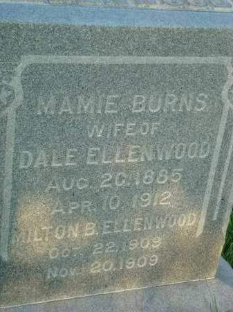 BURNS ELLENWOOD, MAMIE - Washington County, Ohio | MAMIE BURNS ELLENWOOD - Ohio Gravestone Photos