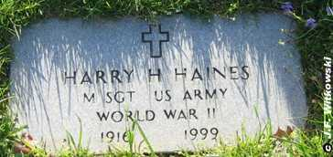 HAINES, SGT HARRY H. - Washington County, Ohio | SGT HARRY H. HAINES - Ohio Gravestone Photos