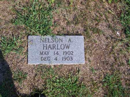HARLOW, NELSON  A - Washington County, Ohio | NELSON  A HARLOW - Ohio Gravestone Photos