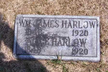 HARLOW, ALICE - Washington County, Ohio | ALICE HARLOW - Ohio Gravestone Photos