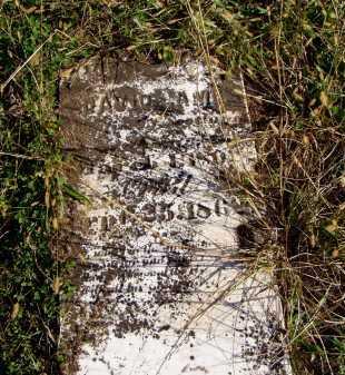 LAMB, DAVID - Washington County, Ohio | DAVID LAMB - Ohio Gravestone Photos