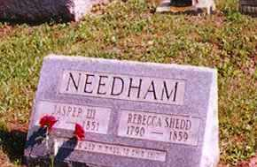 SHEDD NEEDHAM, REBECCA - Washington County, Ohio | REBECCA SHEDD NEEDHAM - Ohio Gravestone Photos