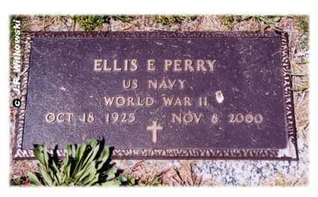 PERRY, ELLIS E. - Washington County, Ohio | ELLIS E. PERRY - Ohio Gravestone Photos