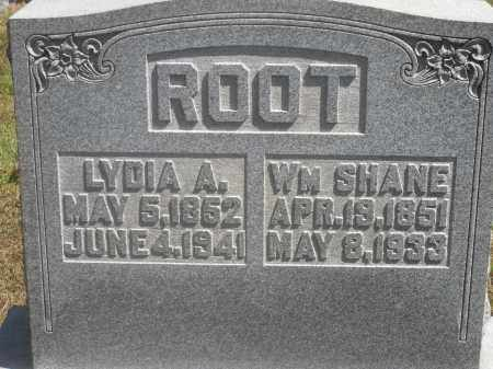 ROOT, LYDIA A. - Washington County, Ohio | LYDIA A. ROOT - Ohio Gravestone Photos