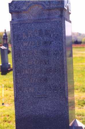SCHRAMM, CAROLINE - Washington County, Ohio   CAROLINE SCHRAMM - Ohio Gravestone Photos
