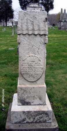 WARD, JOHN L. - Washington County, Ohio   JOHN L. WARD - Ohio Gravestone Photos