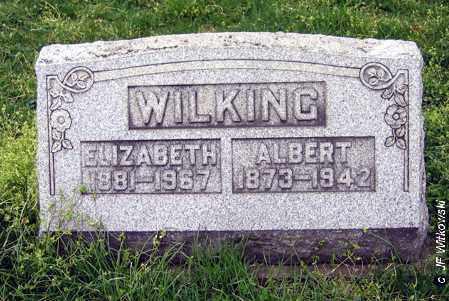 WILKING, ALBERT - Washington County, Ohio | ALBERT WILKING - Ohio Gravestone Photos