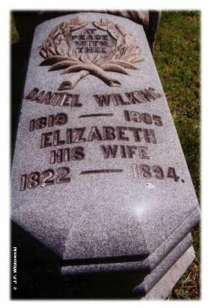 WILKING, DANIEL - Washington County, Ohio | DANIEL WILKING - Ohio Gravestone Photos