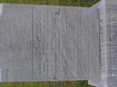 WILSON, JANE - Washington County, Ohio | JANE WILSON - Ohio Gravestone Photos