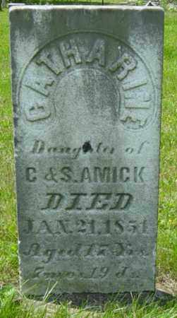 AMICK, CATHARINE - Wayne County, Ohio | CATHARINE AMICK - Ohio Gravestone Photos