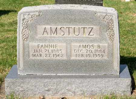 AMSTUTZ, FANNIE - Wayne County, Ohio | FANNIE AMSTUTZ - Ohio Gravestone Photos
