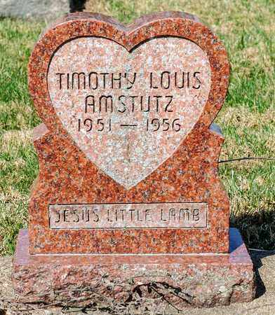 AMSTUTZ, TIMOTHY LOUIS - Wayne County, Ohio   TIMOTHY LOUIS AMSTUTZ - Ohio Gravestone Photos
