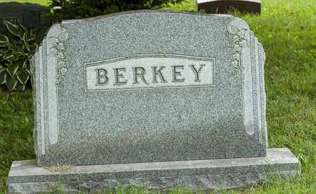 BERKEY, CARL E. - Wayne County, Ohio | CARL E. BERKEY - Ohio Gravestone Photos