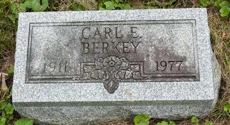 BERKEY, CARL E. - Wayne County, Ohio | CARL E. BERKEY - Ohio Gravestone Photos