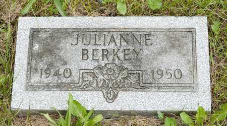BERKEY, JULIANNE - Wayne County, Ohio   JULIANNE BERKEY - Ohio Gravestone Photos