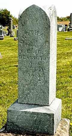 BEVINGTON, BERTHA - Wayne County, Ohio | BERTHA BEVINGTON - Ohio Gravestone Photos