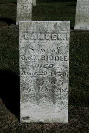 BIDDLE, SAMUEL - Wayne County, Ohio | SAMUEL BIDDLE - Ohio Gravestone Photos