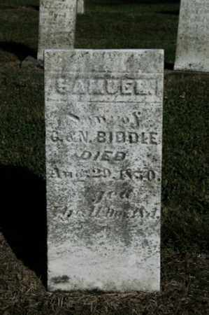 BIDDLE, SAMUEL - Wayne County, Ohio | SAMUEL BIDDLE - Ohio Gravestone Photos