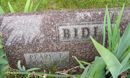 BIDLE, PEARL E. - Wayne County, Ohio | PEARL E. BIDLE - Ohio Gravestone Photos