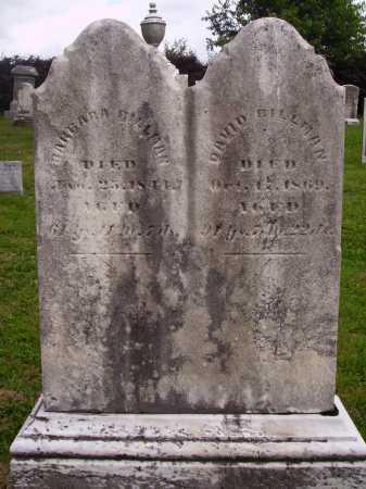BILLMAN, DAVID - OVERALL VIEW - Wayne County, Ohio | DAVID - OVERALL VIEW BILLMAN - Ohio Gravestone Photos