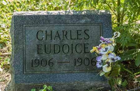 BROWN, CHARLES EUDOICE - Wayne County, Ohio | CHARLES EUDOICE BROWN - Ohio Gravestone Photos