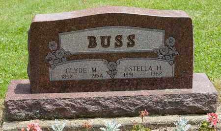 BUSS, ESTELLA - Wayne County, Ohio | ESTELLA BUSS - Ohio Gravestone Photos