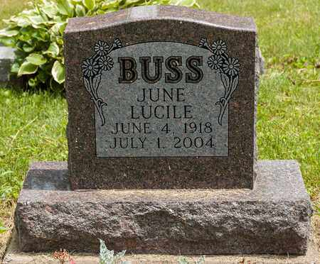 BUSS, JUNE LUCILE - Wayne County, Ohio   JUNE LUCILE BUSS - Ohio Gravestone Photos