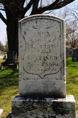 COOK, ANNA - Wayne County, Ohio   ANNA COOK - Ohio Gravestone Photos