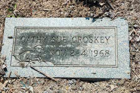 CROSKEY, CATHY SUE - Wayne County, Ohio | CATHY SUE CROSKEY - Ohio Gravestone Photos