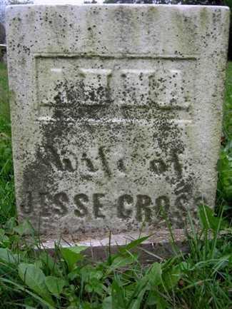 THOMPSON CROSS, ANNA - Wayne County, Ohio | ANNA THOMPSON CROSS - Ohio Gravestone Photos