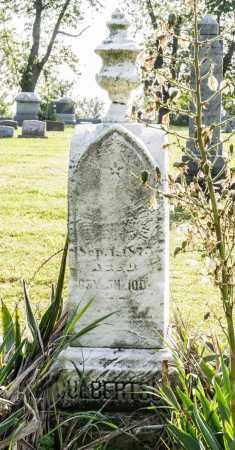 CULBERTSON, ANDREW S. - Wayne County, Ohio   ANDREW S. CULBERTSON - Ohio Gravestone Photos