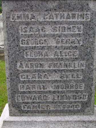 DAGUE FAMILY RECORD, GEORGE & MARY ANN - Wayne County, Ohio | GEORGE & MARY ANN DAGUE FAMILY RECORD - Ohio Gravestone Photos