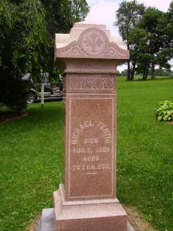 FERTIG, MICHAEL - OVERALL VIEW - Wayne County, Ohio | MICHAEL - OVERALL VIEW FERTIG - Ohio Gravestone Photos